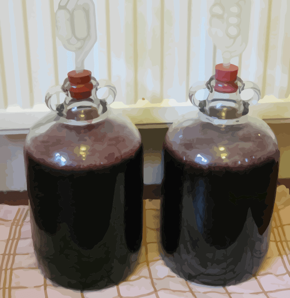 Homebrew Wine Vessels