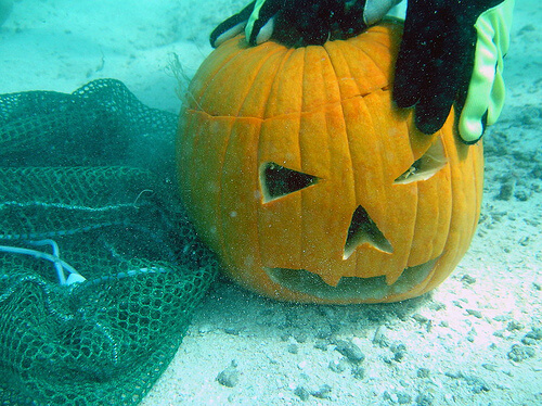 One Scuba Diver and One Pumpkin