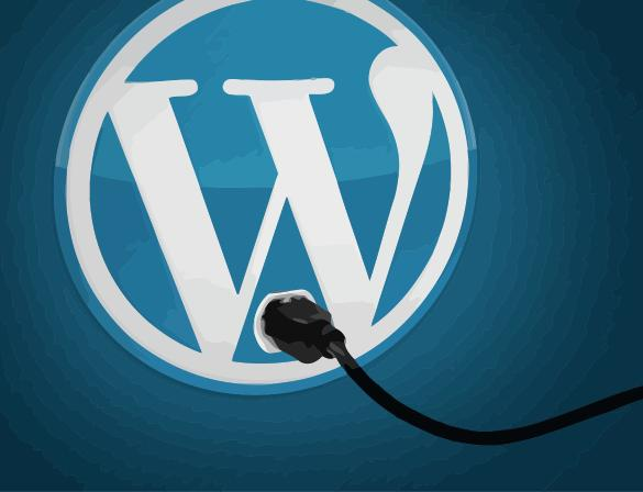 Wordpress with Plug