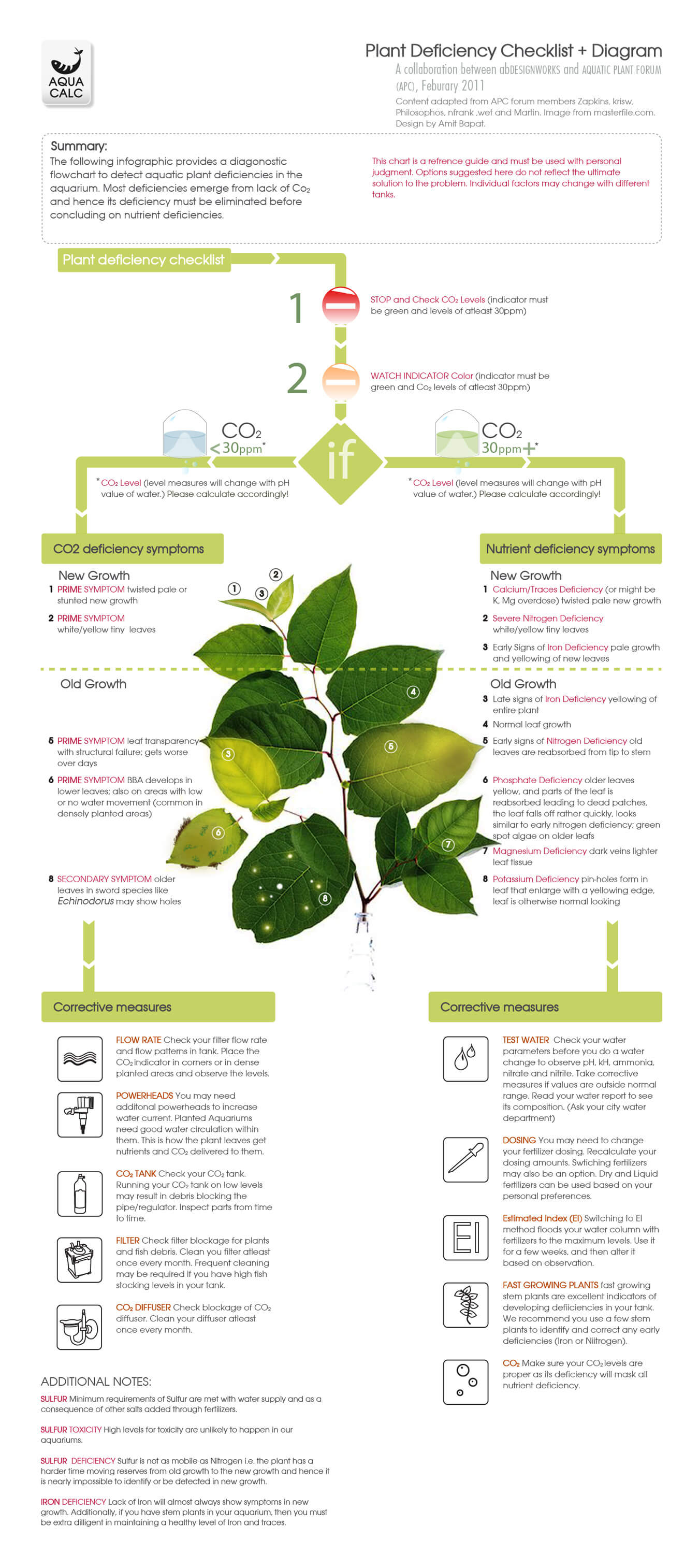 Plant Deficiency Decision Tree