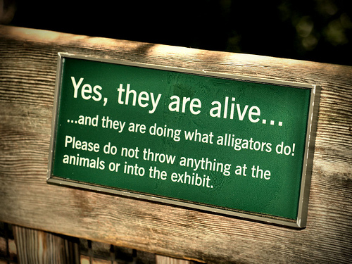 15 Funny Animal Signs Infolific
