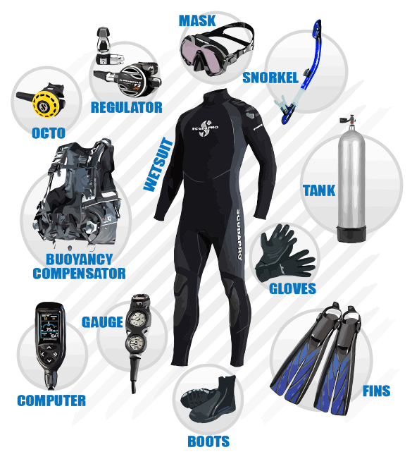 Where to Buy Scuba Diving Equipment